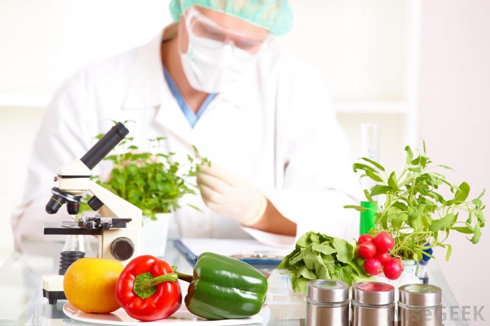 Bộ kiểm tra thực phẩm
